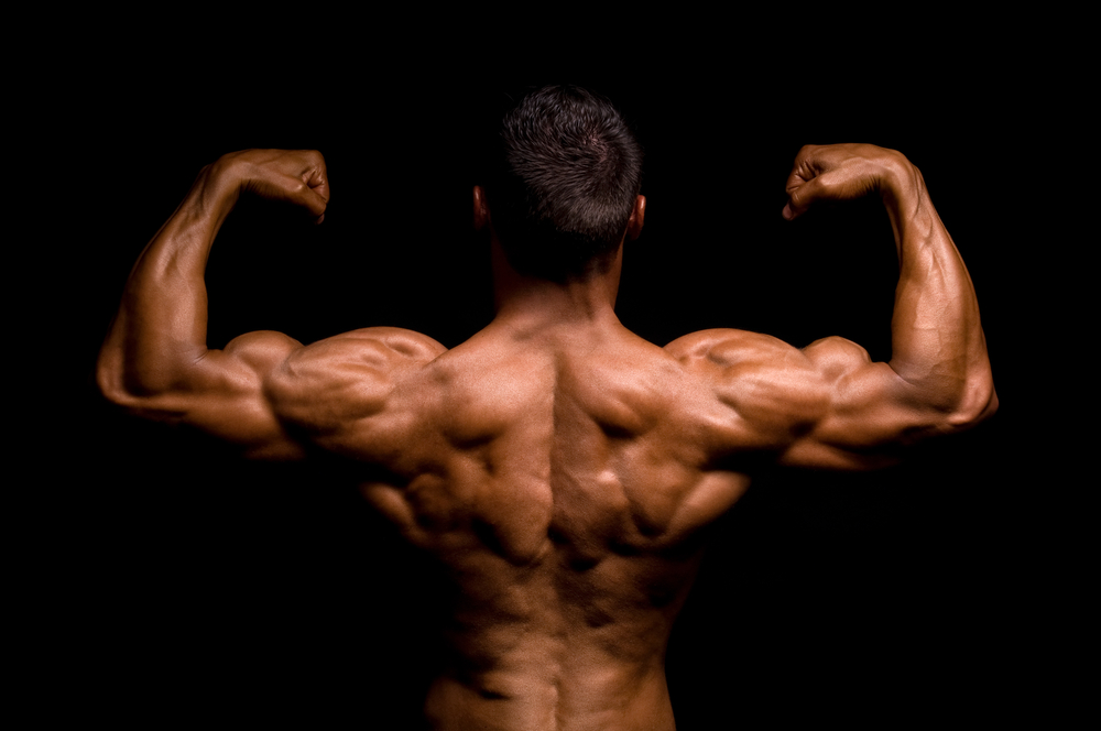 Bodybuilding goals: Did you deliver?