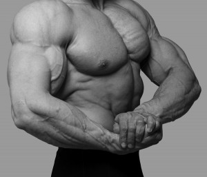 How to build muscle: the closing 7 big lies.